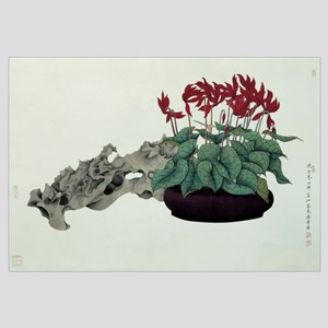 Cyclamen and Rock