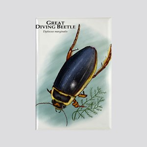 Great Diving Beetle Rectangle Magnet