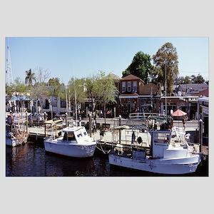Boats moored at a harbor Tarpon Springs Pinellas C