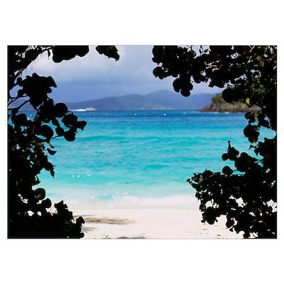 Panoramic view of a beach, Cinnamon Bay, St. John, Poster