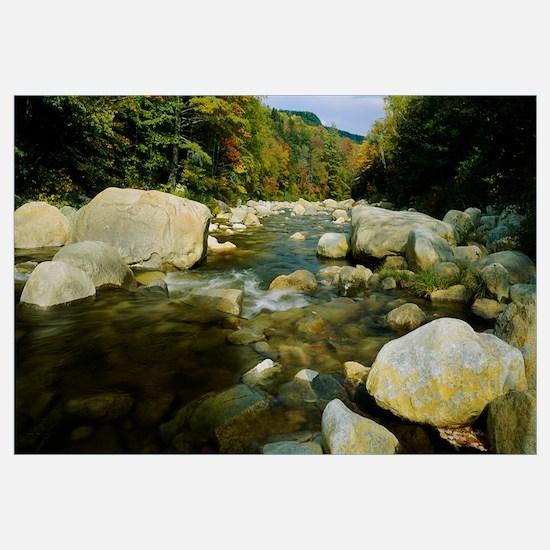Rocks in a river, Swift River, White Mountains, Ne