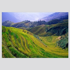 Rice paddy terraces on rolling hills, Longsheng Ar