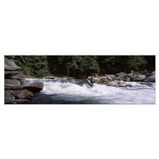 Water flowing through rocks, Bull Sluice, Chattoog Poster
