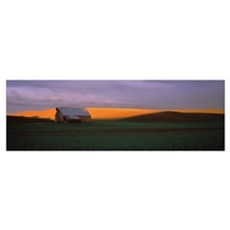Barn in a field at sunset, Palouse, Whitman County Poster