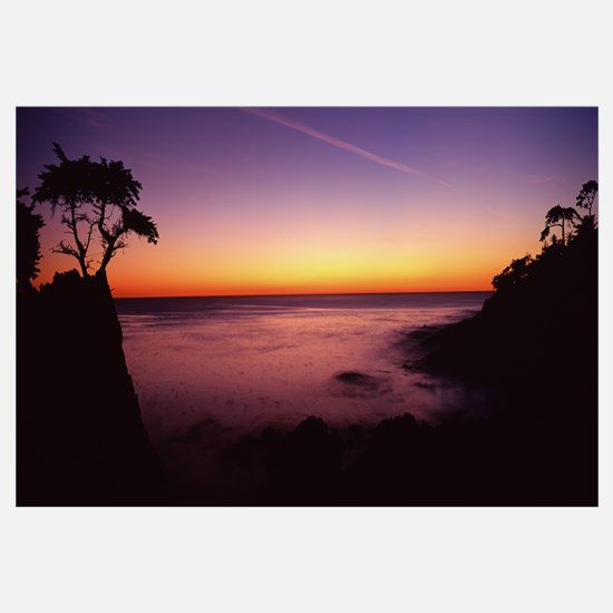 Silhouette of lone cypress tree on a cliff, 17 Mil