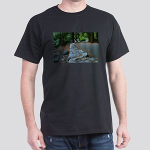 Yosemite Walk Way Dark T-Shirt