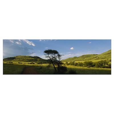 Path on a landscape, Zimbabwe Poster