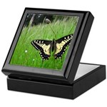 Anise Swallowtail Butterfly Keepsake Box