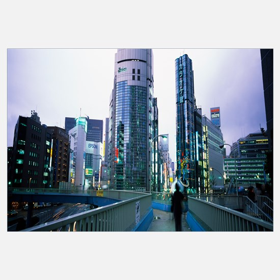 Rear view of a person walking on an overpass, Shin