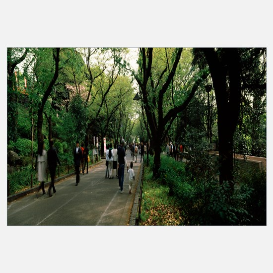 People walking in a park, Ueno Park, Taito, Tokyo