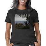 Hualapai Mountain View Women's Classic T-Shirt