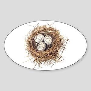 Nest Sticker (Oval)
