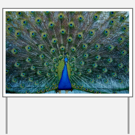 Peacock 6025 - Yard Sign