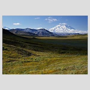 Arctic tundra of Denali National Park, distant sno