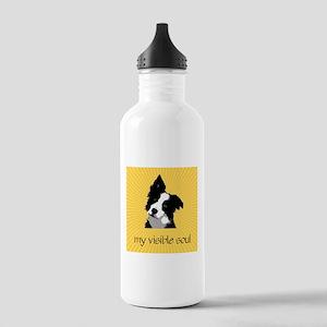Border Collie Sunburst Stainless Water Bottle 1.0L