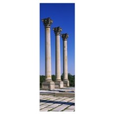Columns, National Capitol Columns, National Arbore Poster