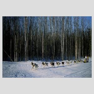 18 huskies begin the long haul of 1049 miles to No