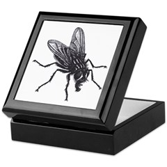 The Fly Keepsake Box