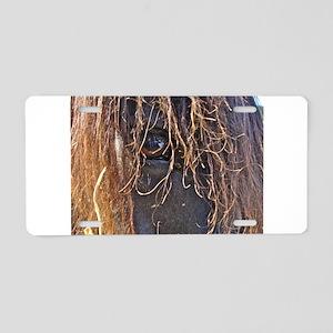 Horse Eye Aluminum License Plate