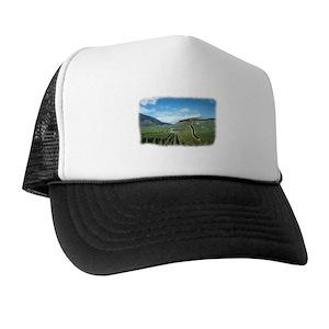 Plain Black Trucker Hats - CafePress d0ad12a9941
