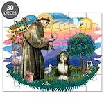St.Francis #2/ Beardie (#8) Puzzle