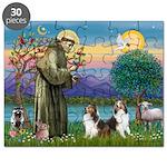 St.Francis (W) - 2 Shelties ( Puzzle