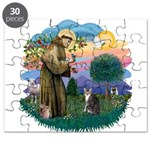 St. Fran (f)-Tabby/white cat Puzzle