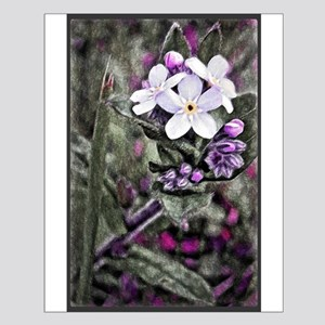 Forget Me Not WildFlower Art Small Poster