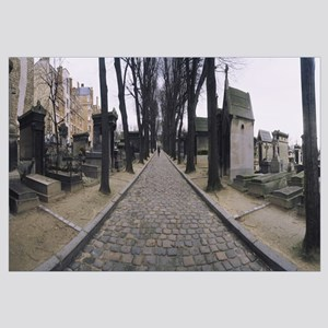 Bare trees along a path in a graveyard, Pere Lacha
