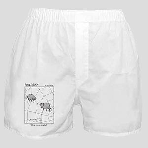 Nice Website! Boxer Shorts