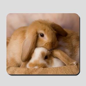 Cuddle Bunnies Mousepad