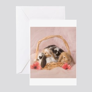 Basket Bunnies Greeting Cards (Pk of 20)