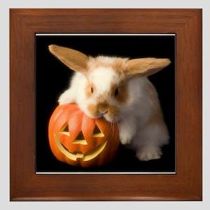 Jackolantern Bunny Framed Tile