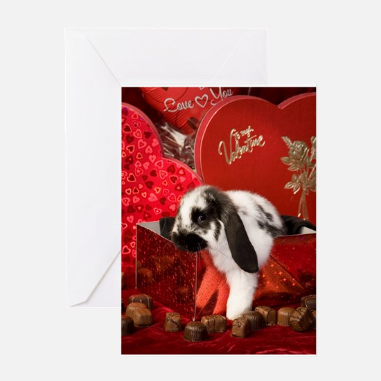 Valentine's Bunny Greeting Card