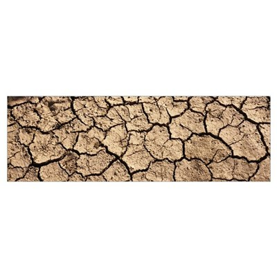Cracked mud in a desert, San Benito County, Califo Poster