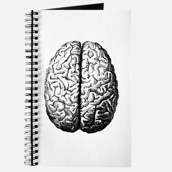 Brain II Journal