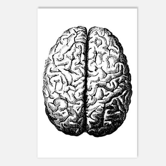 Brain II Postcards (Package of 8)