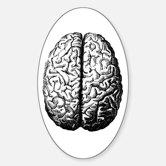 Brain II Oval Decal
