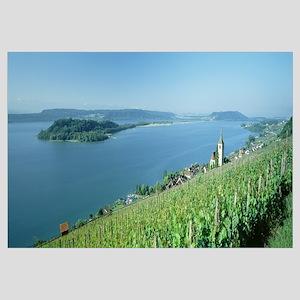Vineyards w\Village Ligerz and Lake Biel Bern Swit