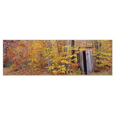 Outhouse in a forest, Adirondack Mountains, New Yo Poster