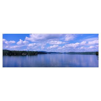 Trees along a lake, Tupper Lake, Adirondack Mounta Poster
