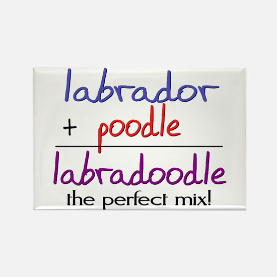 Labradoodle PERFECT MIX Rectangle Magnet