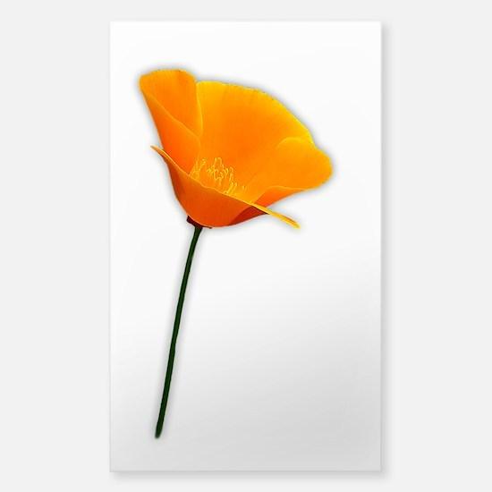 California Poppy Sticker (Rectangle)