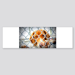 gt0309gtdogartist-31209876 Bumper Sticker