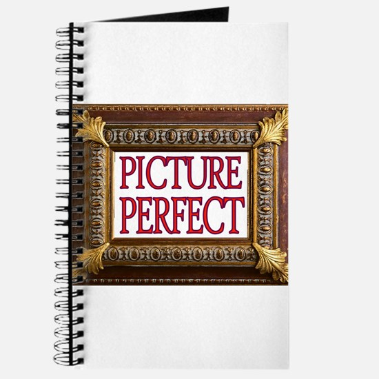 PERFECT PICTURE Journal