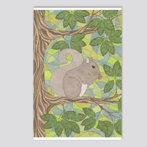 Grey Squirrel Postcards (Package of 8)