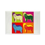Bearded Collie Silhouette Pop Art Rectangle Magnet