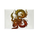 Karami Ryuu 1 Rectangle Magnet (100 pack)