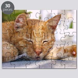 Sleeping Cat Puzzle