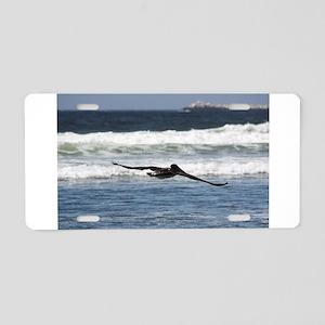 Beach Birds Photography & Pro Aluminum License Pla